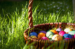 Easter eggs. Painted in basket on grass royalty free stock photos
