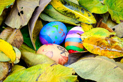 Easter eggs painted by child. Hide in leaves Royalty Free Stock Image