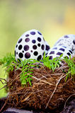 Easter Eggs painted by hand with black and white in real nest Stock Photography