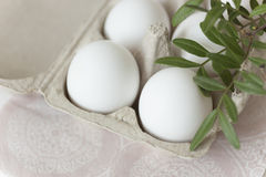 Easter eggs on pale background. In natural light stock images