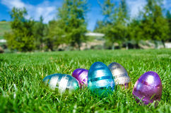 Easter eggs in the park with the grass background Stock Image