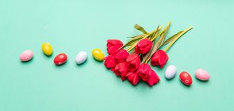 Easter eggs, pastel colors painted and tulips, green background royalty free stock image
