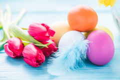 Easter eggs in pastel colors with tulips Royalty Free Stock Image