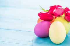 Easter eggs in pastel colors with tulips Royalty Free Stock Photo