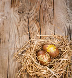 Easter eggs with pattern in a nest Royalty Free Stock Photography