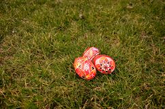 Easter Eggs. The photo of easter eggs on grass Stock Image