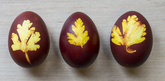 Easter eggs with pictures on wooden background. Three Easter red eggs with amazing pictures of leaves on wooden background Stock Images