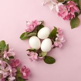 Easter eggs and pink flowers on white background. Easter nest. Flat lay, top view, concept of spring, femininity and beauty. Easter eggs and pink flowers on Stock Photos
