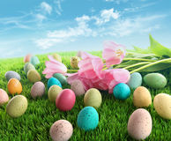 Easter eggs with pink tulips on grass. With blue sky Royalty Free Stock Photo