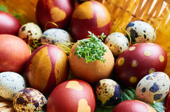 Easter eggs on the plate. Easter holidays, brown eggs on the straw plate Stock Image