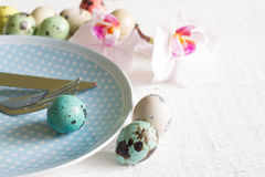 Easter eggs on plate and orchid abstract concept Royalty Free Stock Images