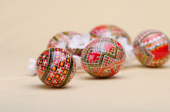 Easter eggs and plum cherry flowers Royalty Free Stock Images