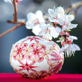 Easter eggs and plum cherry flowers Royalty Free Stock Photos