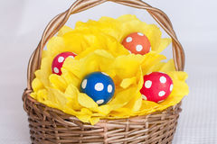 Easter eggs on pompom in basket  on checkered white background Stock Images