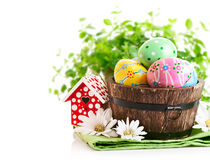 Easter eggs in the pot with green grass Royalty Free Stock Images