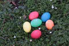 Colored Easter Eggs on a Meadow Stock Photos