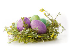 Easter eggs in purple Stock Image