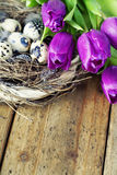 Easter eggs with purple tulip flowers Stock Photo