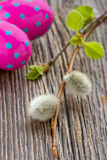 Easter eggs and pussy willow. Colorful easter eggs and pussy willow on wooden rustic background Royalty Free Stock Image