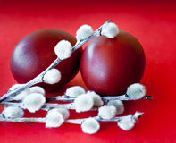 Easter eggs and pussy willow branches. Against red background Royalty Free Stock Images