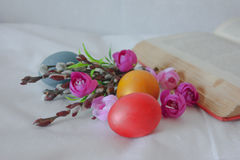 Easter eggs with pussy-willow. Flowers and a book on white. Photo for your design Stock Photography