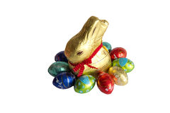 Easter eggs and rabbit. Colorful Easter eggs in a circle with rabbit Stock Image