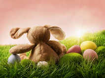 Easter eggs and rabbit Royalty Free Stock Images
