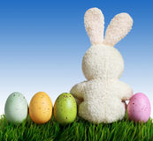 Easter eggs and rabbit on green grass with blue sky Royalty Free Stock Photo
