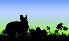 Easter eggs and Rabbit Stock Images