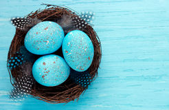 Easter eggs in real bird nest top view ,symbolic Easter decorati Royalty Free Stock Image