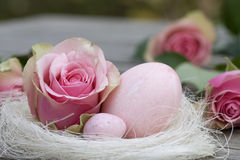 Easter eggs with rose close-up Stock Photography