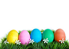Easter Eggs in a Row Stock Image