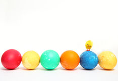 Easter eggs in a row and little chick Royalty Free Stock Photos