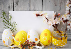 Easter eggs on rustic wooden planks. Easter eggs with a sprig of apricot tree on wooden boards Royalty Free Stock Image