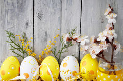 Easter eggs on rustic wooden planks. Easter eggs with a sprig of apricot tree on wooden boards Royalty Free Stock Images