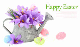 Easter eggs and saffron flowers Royalty Free Stock Photo