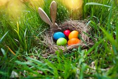 Easter eggs search in a spring meadow stock images