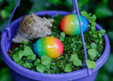 Easter eggs and shell in the violet  flowerpot Stock Images