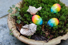 Easter eggs and shells in the moss Royalty Free Stock Photos