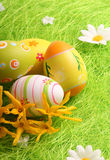 Easter Eggs sitting on grass field Royalty Free Stock Images