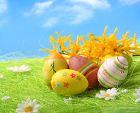 Easter Eggs sitting on grass field Stock Image