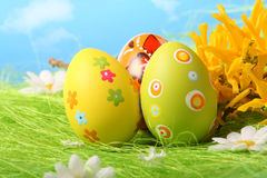 Easter Eggs sitting on grass field with blue sky Stock Photo