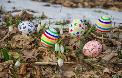 Easter Eggs with snowdrops Stock Photos