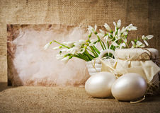 Easter eggs and snowdrops Royalty Free Stock Photo
