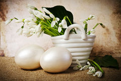 Easter eggs and snowdrops Stock Photography