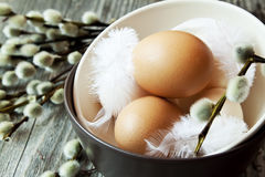 Easter Eggs with Soft Feathers Stock Photos