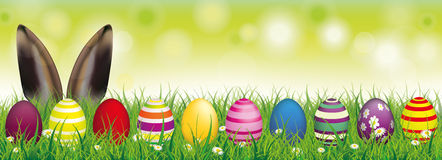Easter Eggs Spring Background Bunny Ears Header. White flowers in grass with colored easter eggs and hare ears on the bokeh background Royalty Free Stock Photography