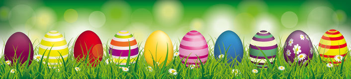 Easter Eggs Spring Background Header. White flowers in grass with colored easter eggs on the bokeh background Royalty Free Stock Photo