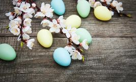 Easter eggs and spring  blossom. On a old wooden background Royalty Free Stock Photography