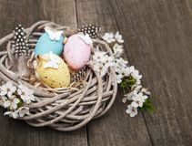 Easter eggs and spring  blossom. On a old wooden background Royalty Free Stock Photo